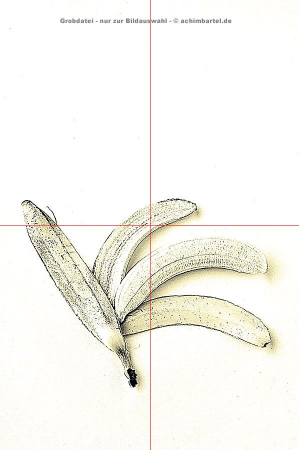Banane_a_11 kopieren