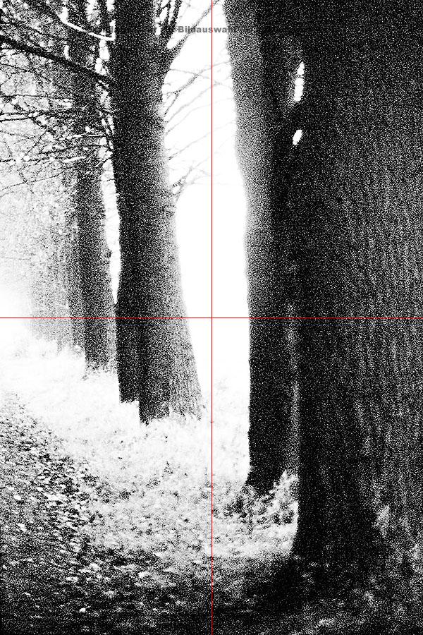 DE_a_07 kopieren