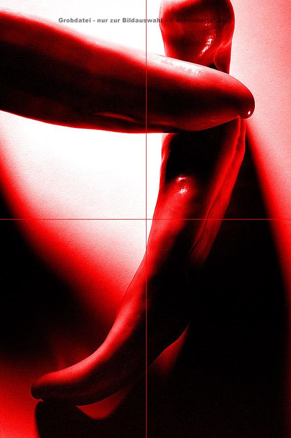 Paprika_01_08 kopieren